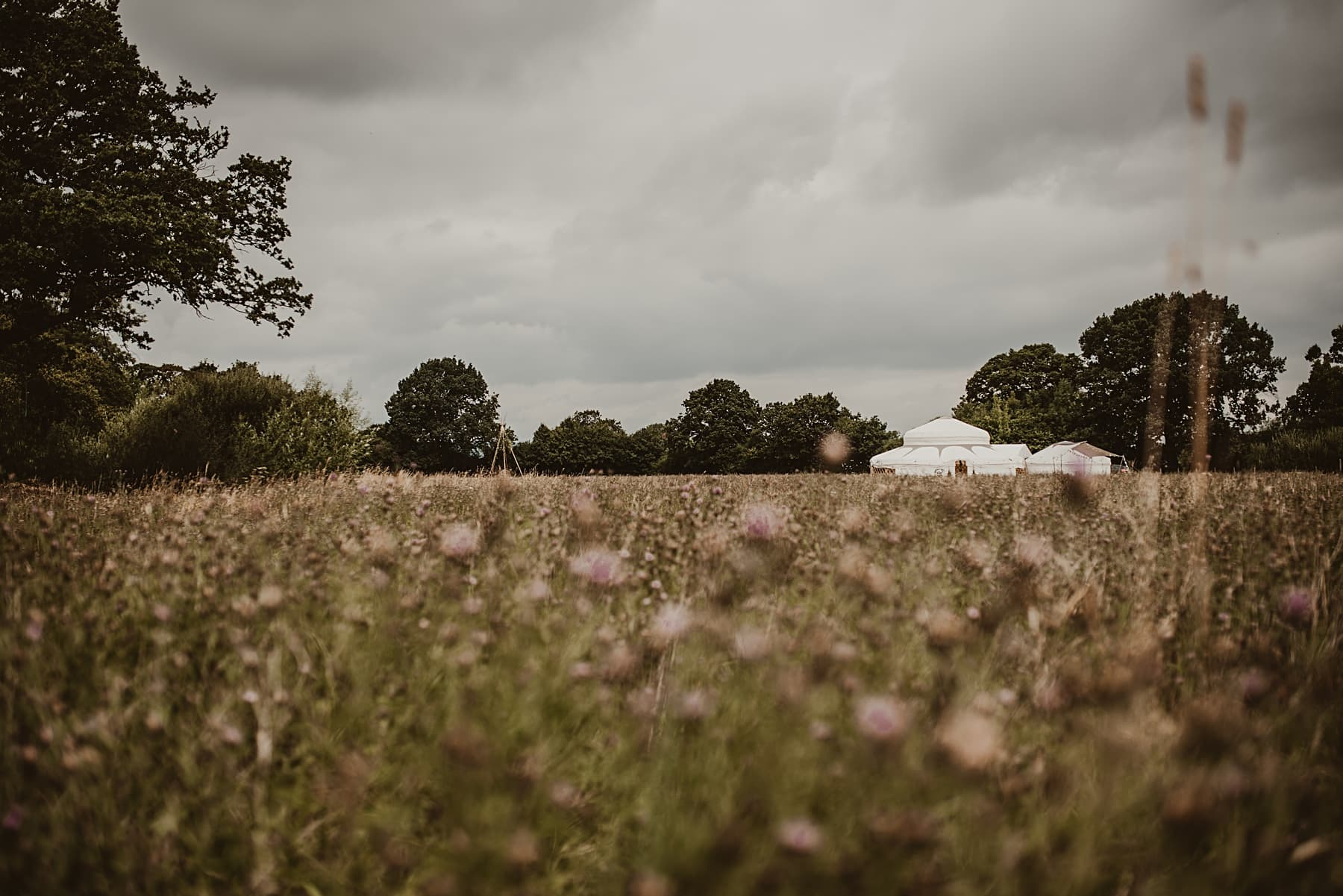 Yurt in meadow wedding Sych Pwll, Powys